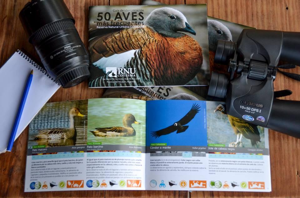 Nueva Guía de las 50 aves mas frecuentes de la RNU COTESMA