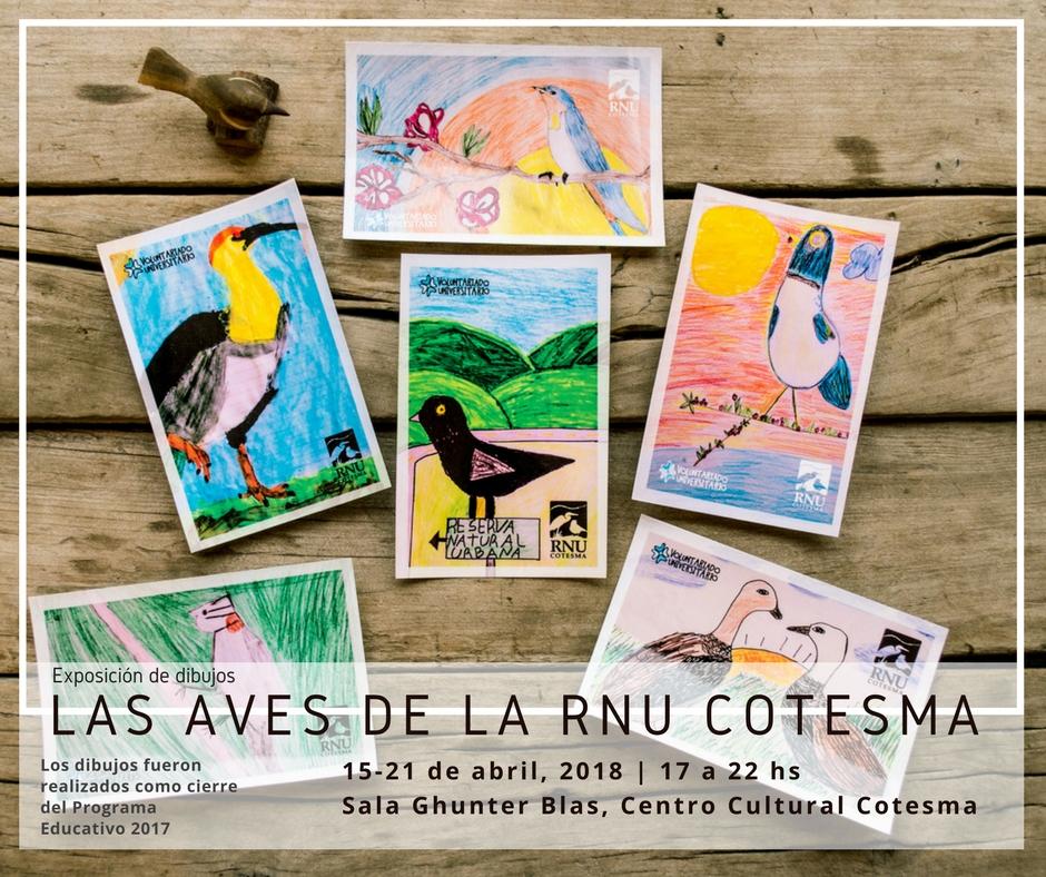 SE VIENE LA EXPO: LAS AVES DE LA RNU COTESMA
