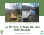La importancia de los Humedales