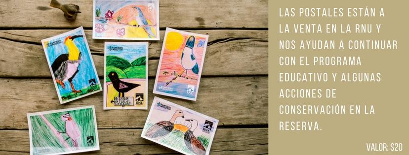 las-postales-estan-a-la-venta-en-la-rnu-las-mismas-ayudan-a-solventar-costos-del-programa-educativo-y-algunas-acciones-de-conservacion-en-la-reserva-birthdaycoffee-chill