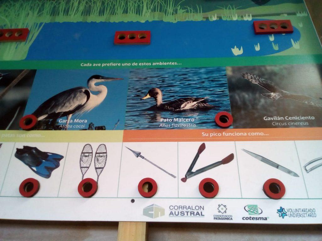 Nueva cartelería en la caseta de observación de aves