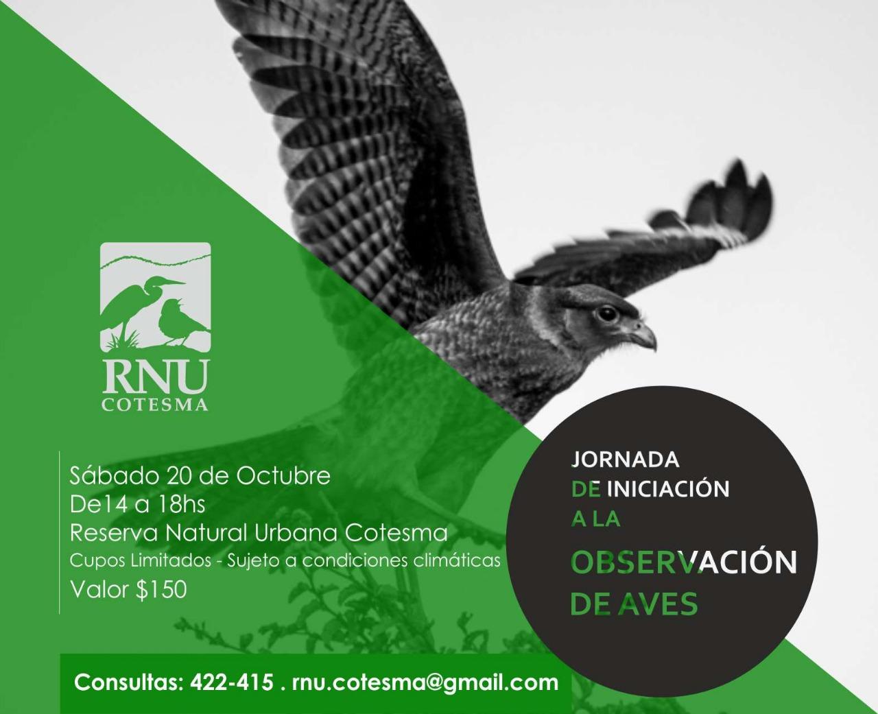 Jornada de Iniciación a la Observación de Aves